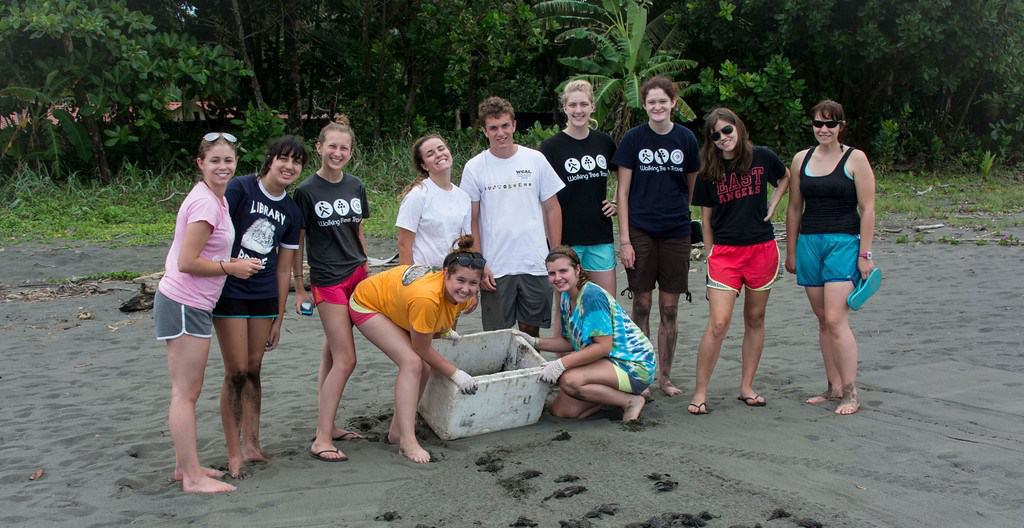 Releasing the just born baby turtles!-0